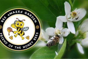 Bee Amazed Garden logo