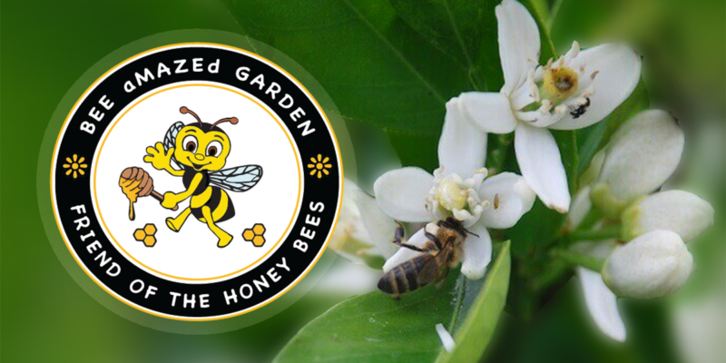 Bee Amazed Garden logo