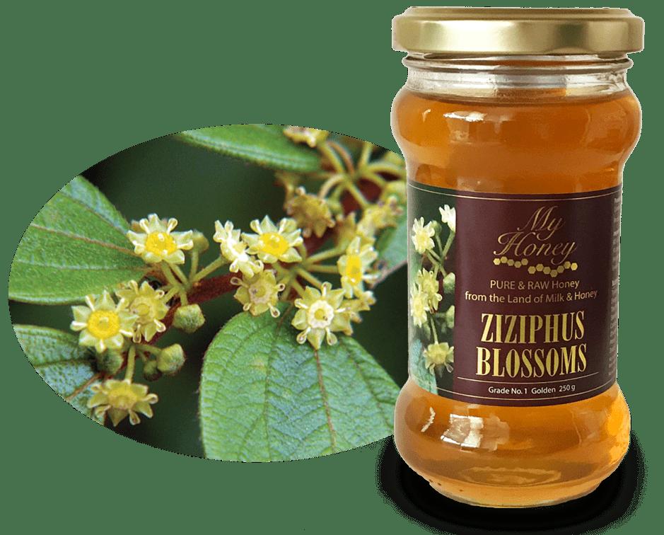 ZIZIPHUS BLOSSOMS